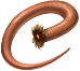 queue de souris